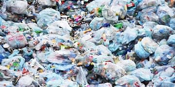 Plastic bags participate to the pollution